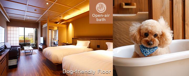 Dog-Friendly Floor